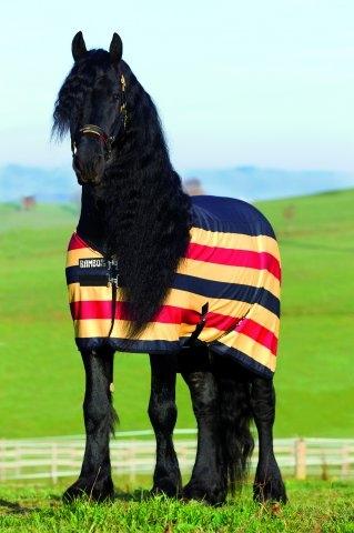 Horseware Rambo Newmarket Fleece Abschwitzdecke gold