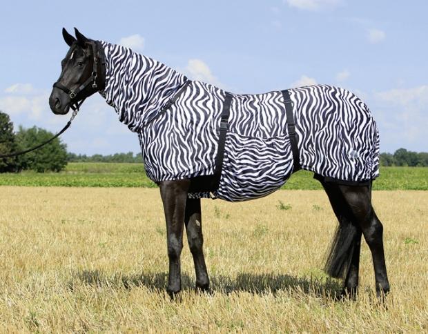 Busse Ekzemerdecke Fliegendecke Extensive Zebra