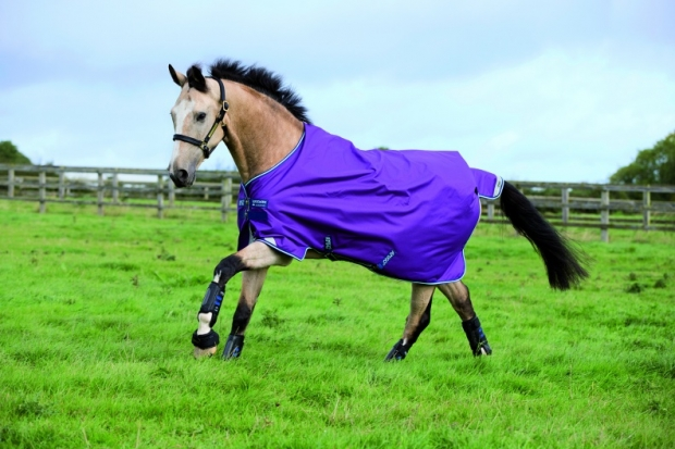 Horseware Amigo Bravo 12 Original lite 100 g Purple with Navy