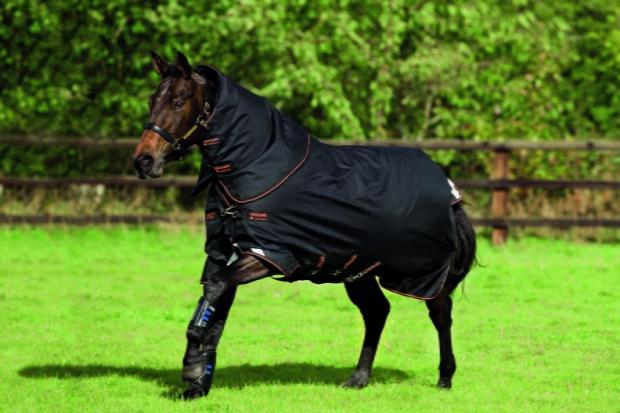 Horseware Amigo Bravo 12 plus medium mit Halsteil black 3 Bauchgurte
