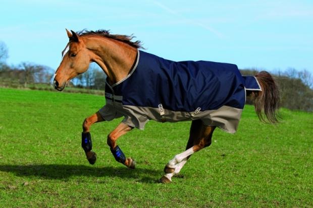 Horseware Amigo Mio Turnout medium navy tan Weidedecke Winterdecke