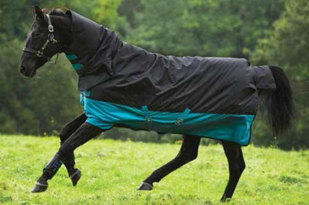 Horseware Amigo Mio All-In-One medium 200 Grmm black turquoise Weidedecke Winterdecke