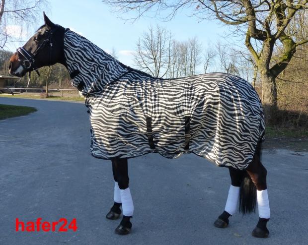Zebra Fliegendecke Ekzemerdecke mit Halsteil und Kreuzbegurtung