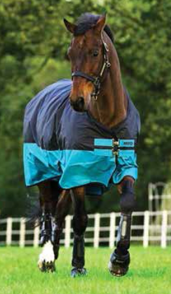 Horseware Amigo Mio Turnout medium black turquoise Weidedecke Winterdecke