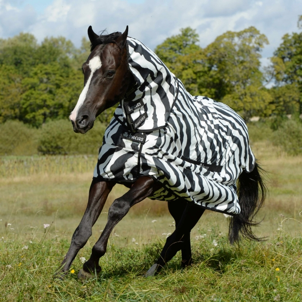 Bucas Sweet-Itch Zebra Pony 85-120