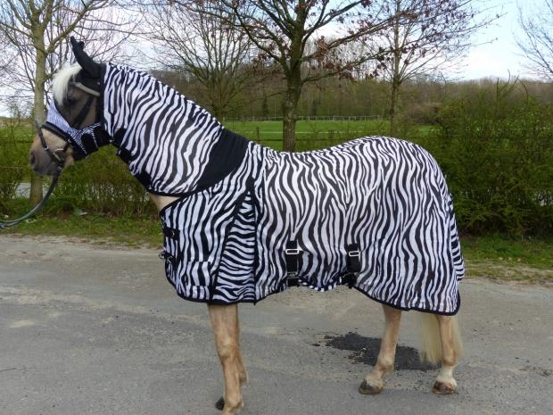 Hafer24 Deluxe Zebra - unsere meistverkaufte Ekzemerdecke Fliegendecke