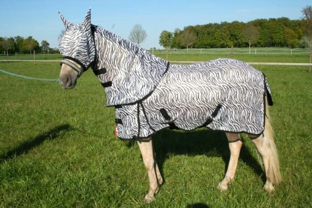 Hafer24 Fliegendecke Ekzemerdecke Afrika - Zebra mit passender Fliegenmaske