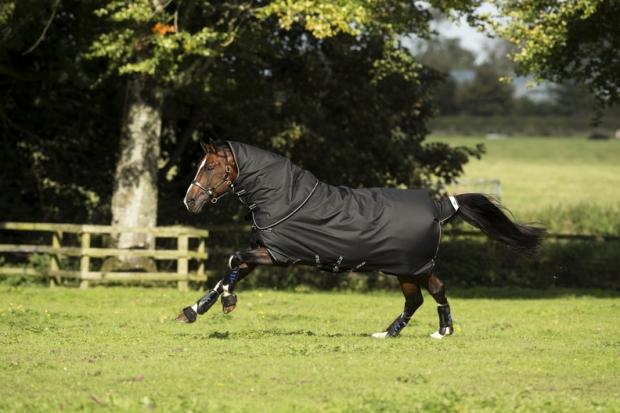 Horseware Amigo Bravo 12 Plus heavy mit Halsteil black with black  NEU 3 Bauchgurte