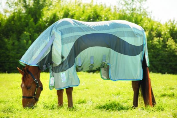 Horseware Amigo Evolution Fliegendecke Silver/ Dark Grey