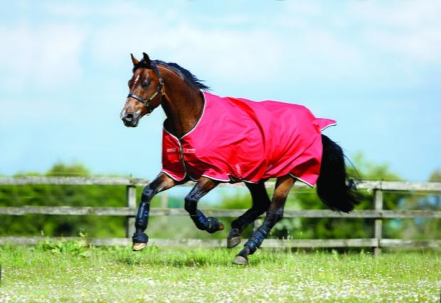 Horseware Amigo Turnout Hero 6 lite red Weidedecke