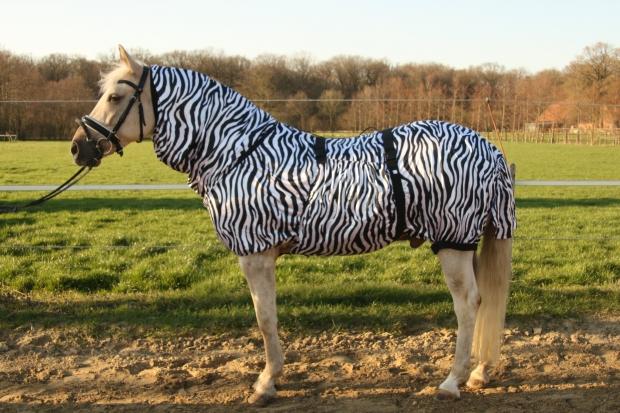 Hafer24 Ekzemerdecke Fliegendecke Master - Farbe zebra