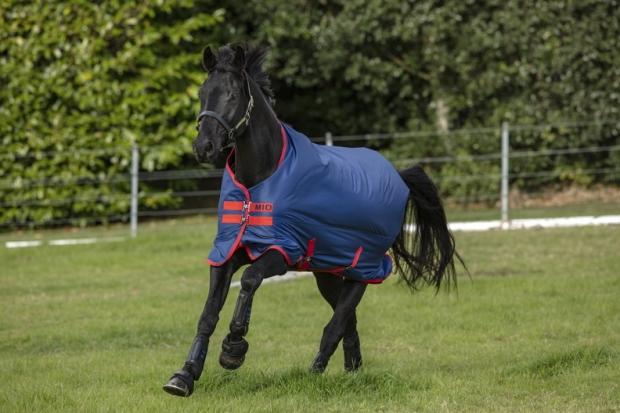 Horseware Amigo Mio Turnout medium dark blue red Weidedecke Regendecke
