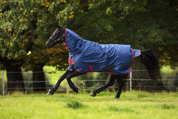 Horseware Amigo Mio All-In-One Turnout lite dark blue & red Regendecke mit Halsteil