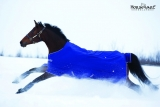 Horseware Amigo Turnout Hero 6 medium atlantic blue