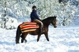 Horseware Rambo Newmarket Competition Fleece Ausreitdecke gold