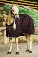 Horseware Rambo Stalldecke Stable Rug 200 g dark brown