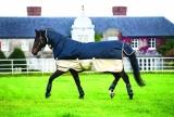Horseware Amigo Mio All-In-One Turnout lite navy/ tan Regendecke mit Halsteil