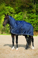 Horseware Rambo Mack in a Sack navy