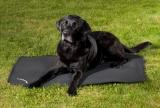 Back on Track Hundematratze Cage Fit schwarz verschiedene Größen