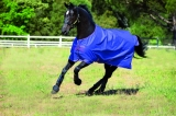 Horseware Amigo Turnout Hero 6 lite Purple berry