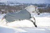 Horseware Rambo Original lite 100 g mit Beinausschnitt grey ohne Halsteil