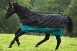 Horseware Amigo Mio All-In-One medium 200 Grmm black turquoise Weidedecke Winterdecke