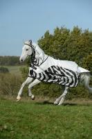 SALE!!!  Bucas Buzz-Off Rain Zebra Full Neck Fliegendecke Regendecke Ekzemerdecke