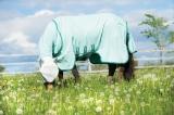Horseware Rambo Sweetitch Hoody Ekzemerdecke mit Fliegenmaske