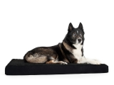 Back on Track Hunde Hundematratze 50 x 60 cm