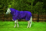 Horseware Amigo Bravo 12 plus medium mit Halsteil Purple 3 Bauchgurte