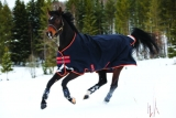 Horseware Amigo Bravo 12 Original medium dark navy with red