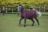 Horseware Amigo Hero ACY lite 0g Disc Front Burgundy/ Orange