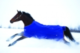 Horseware Amigo Hero ACY medium 200g Atlantic Blue
