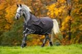 Horseware Amigo Bravo 12 Wug lite excalibur 3 Bauchgurte exalibur/ plum