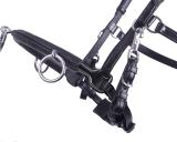 Hafer24 Kappzaum/ Trense mit Gebissriemen Leder schwarz WB